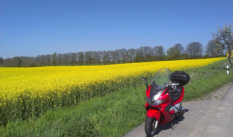 moto au bord d'un champ